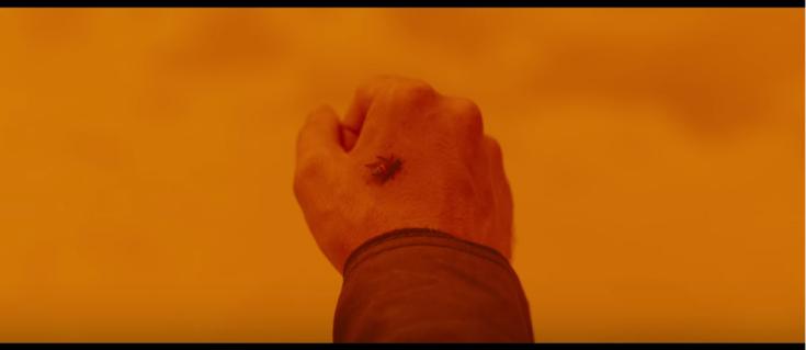 Bee Hand 1