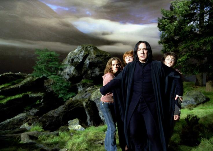 Snape Hide Behind 1