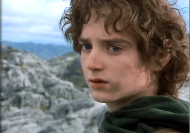 FrodoTurn